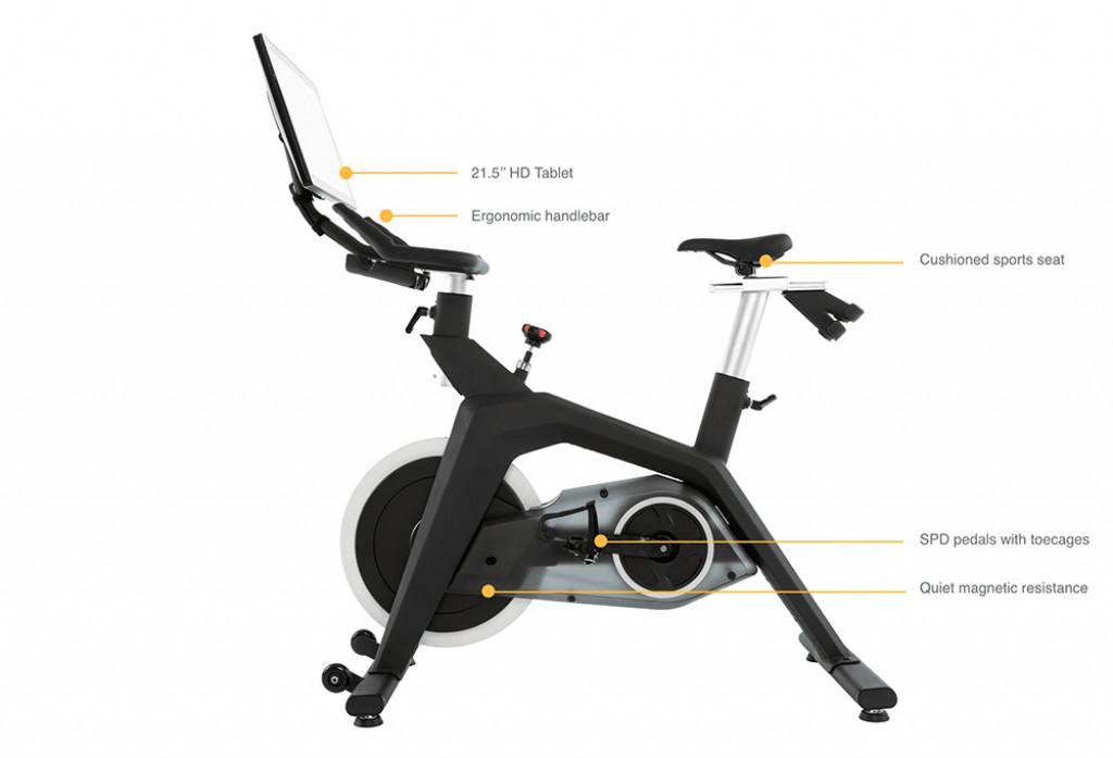 Stryde bike dimensions