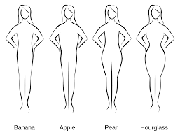 four female body types