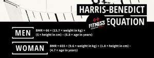Harris Benedict Equation FitnessEquipmentReviews