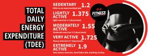 TDEE Fitness Equipment Reviews