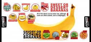 infography - Are Bananas Bad for Weight Loss