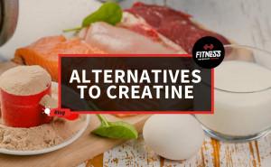 Alternatives To Creatine - Fitness Equipment Reviews