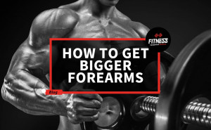 How To Get Bigger Forearms - Fitness Equipment Reviews